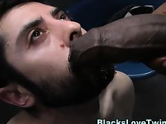 Amateur sucks black cock