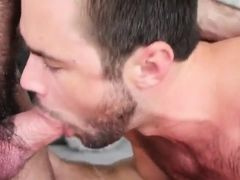 Bearded guy deep throats fat cock of hairy gay