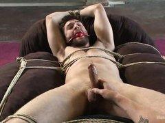 sweet gay bondage domination