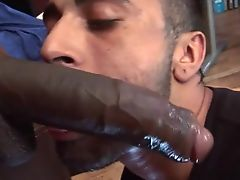 Like clean cut cock hungry athlete blowing his friend looking for nice gentlemen