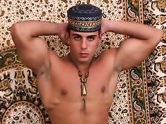 Arabian Cock  4