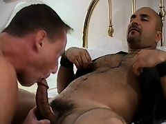 Bareback Daddies of Beverly Hills 2