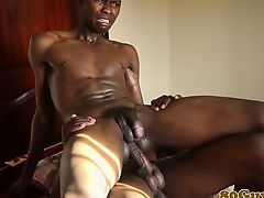 Amateur african twinks bareback